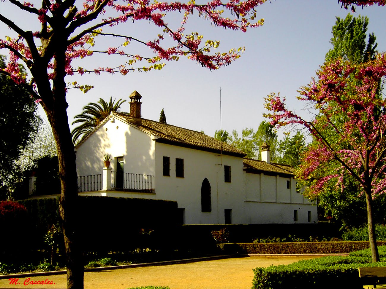 Viaje escolar a Granada Etheria trips